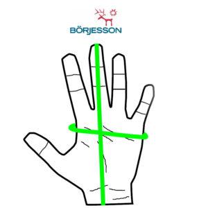 Handskemål skindhandsker kvinder og mænd